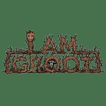 The-Raccoon-Protector_imp-flat