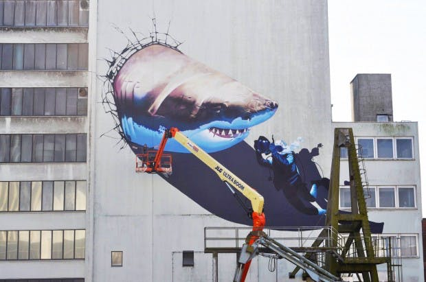 shark graffiti smates
