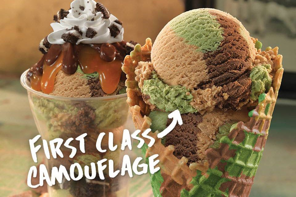 baskin-robbins-first-class-camouflage-ice-cream-1