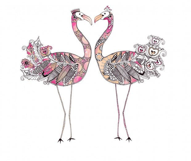 Flamingo Illustration Artist