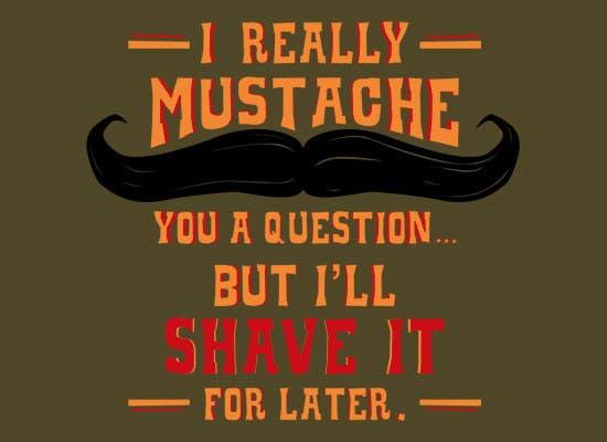 moustacheyouaquestion_fullpic