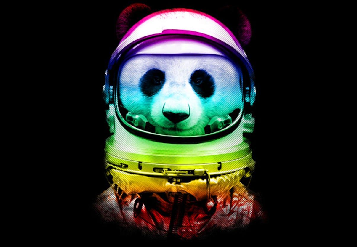 Panda T-shirts Designbyhumans