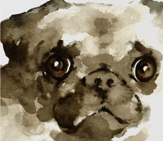 Pug Dog art wall