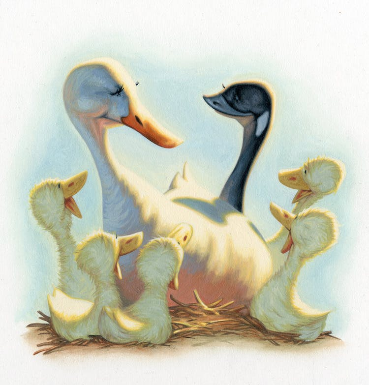 Duck Family illustration