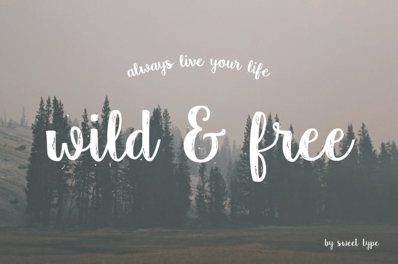 wild and free country typo