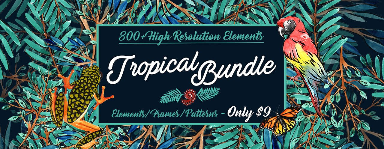 Tropical Bundle Cover Blog TSF